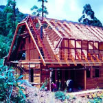 Solid Wood Home Construction